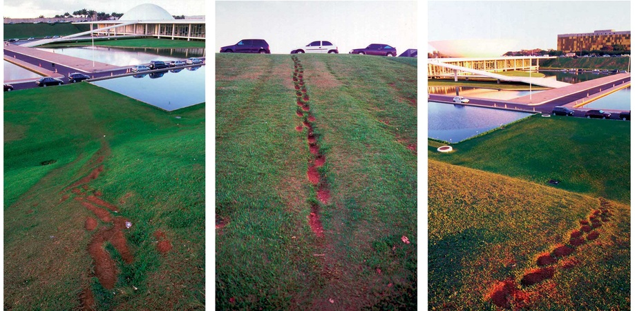 Damián Ortega: Brasilia (Access gardens to the Oscar Niemeyer Buildings in Brasilia), 2003